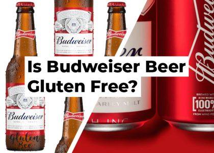 Is Budweiser Beer Gluten Free?