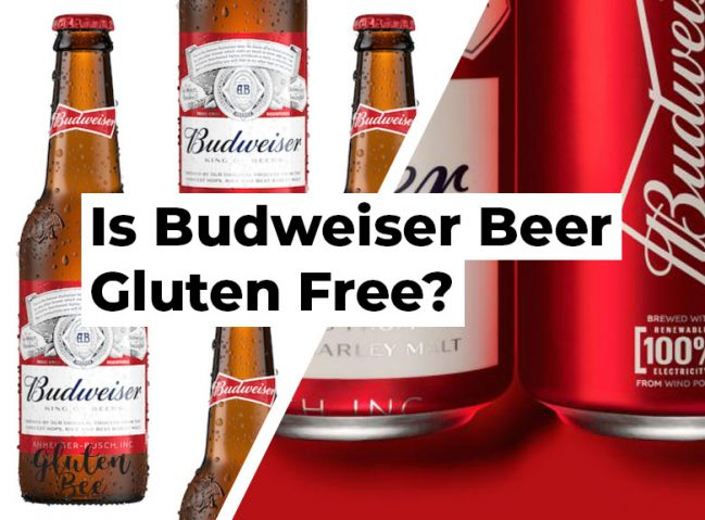 Is Budweiser Beer Gluten Free?