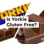 Is Yorkie Gluten Free?