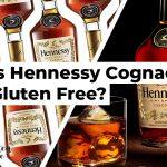 Is Hennessy Gluten Free?