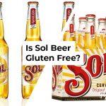 Is Sol Gluten Free?
